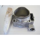 CYLINDER AND PISTON KIT FOR CRF 450 INJECTION SINCE 2009